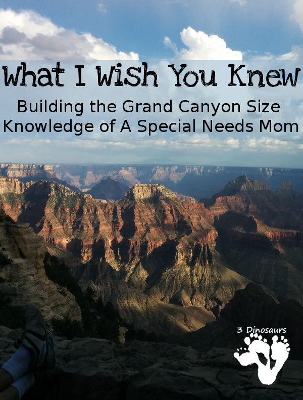 What I Wish You Knew: Building the Grand Knowledge of A Special Needs Mom - 3Dinosaurs.com
