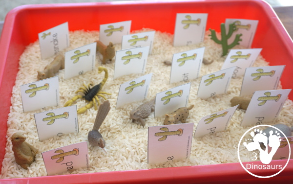 Free Wild West Sorting Nouns & Verbs - with Ghost Town at Sundown - a picture of the sensory bin with the noun and verb cards with the desert toob - 3Dinosaurs.com