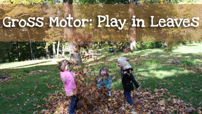 Gross Motor Playing in Leaves