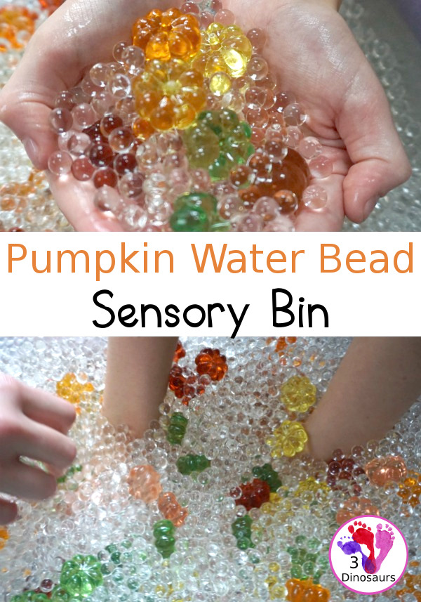 Pumpkin Water Beads Sensory Bin - fun sensory play with clear water beads and acrylic pumpkins make a fun sensory play for the fall - 3Dinosaurs.com