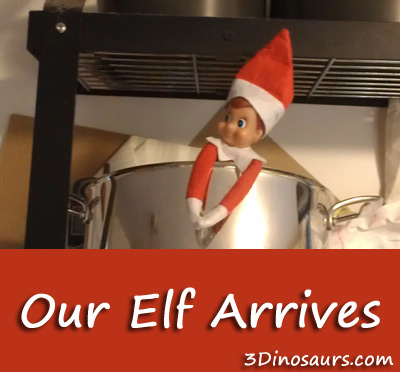 Our Elf Arrives