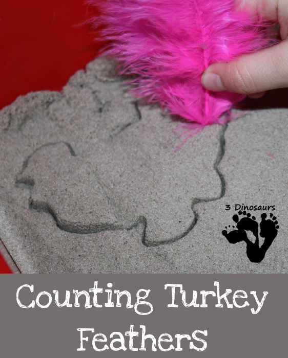 Counting Turkey Feathers - 3Dinosaurs.com
