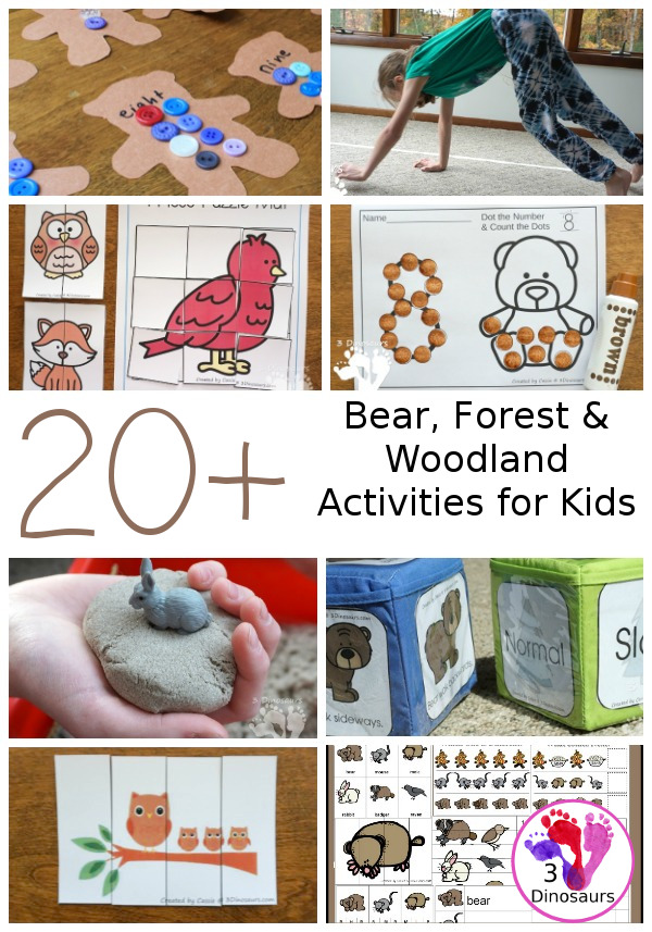 20+ Bear, Forest, and Woodland Animals Activities & Printables - a fun collection of bear, forest, and woodland animals for kids to learn. It includes math, abcs, numbers, gross motor counting and more - 3Dinosaurs.com