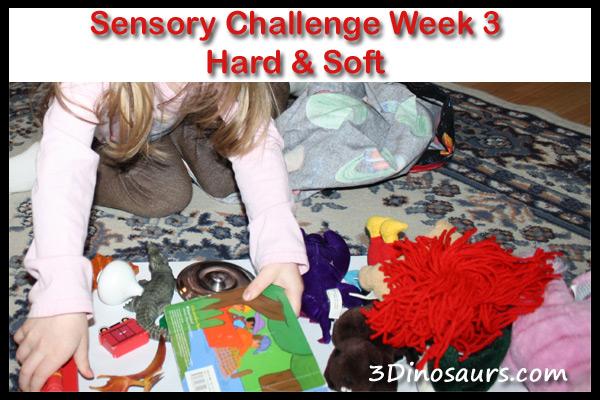 Sensory Challenge Week 3: Sorting Hard & Soft