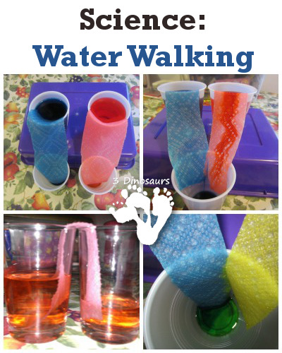 Science: Water Walking - 3Dinosaurs.com