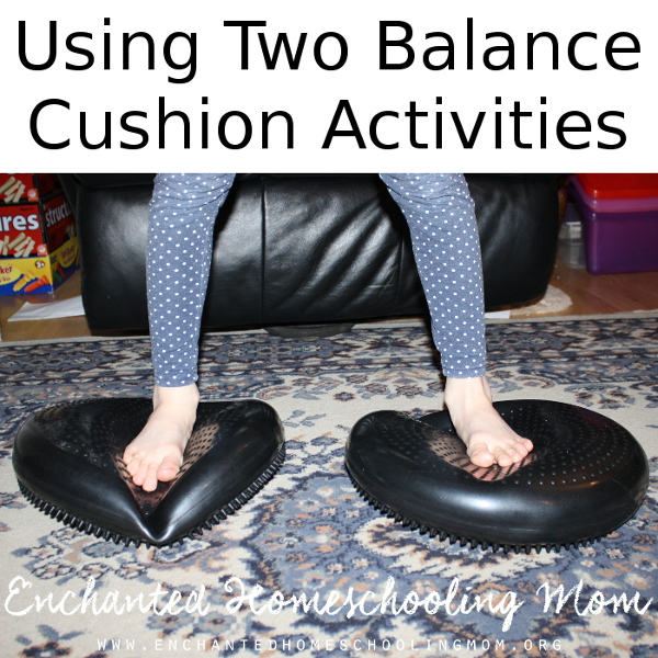 Using Two Balance Cushion Activities - 3Dinosaurs.com