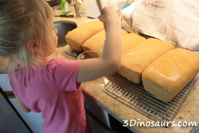 Little Red Hen and Making Bread - 3Dinsoaurs.com