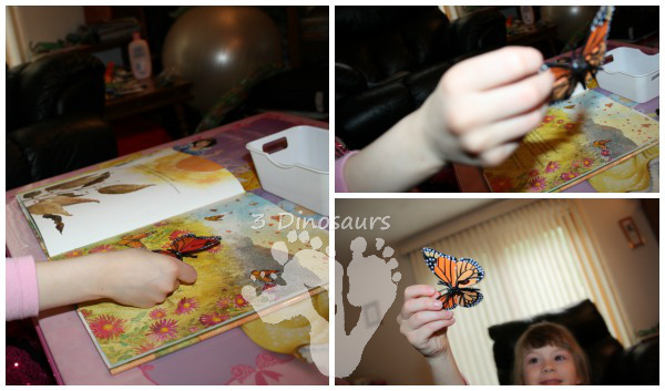 Hands On Learning: Butterfly Life Cycle - 3Dinosaurs.com