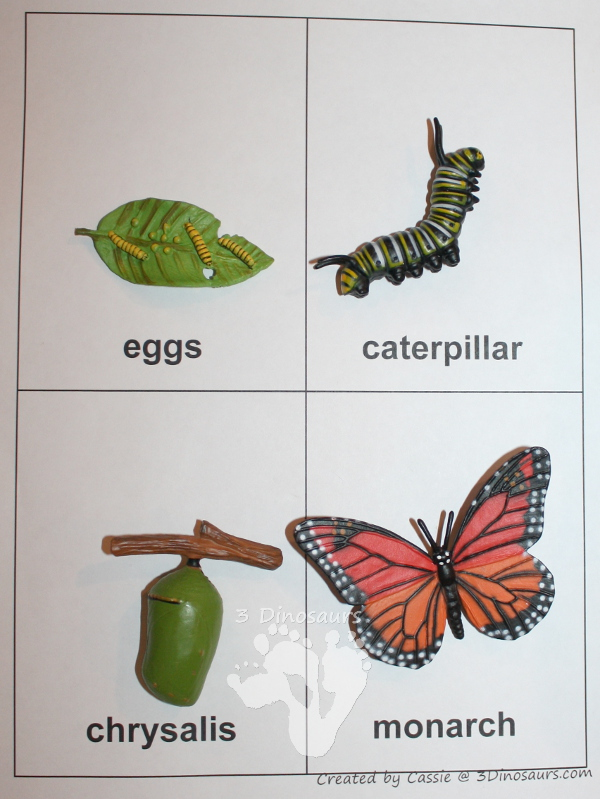 Free Worksheets » Life Cycle Of Butterfly Worksheet - Free ...