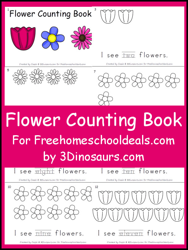 Flower Counting Book -numbers 1 through 11 - - 3Dinosaurs.com