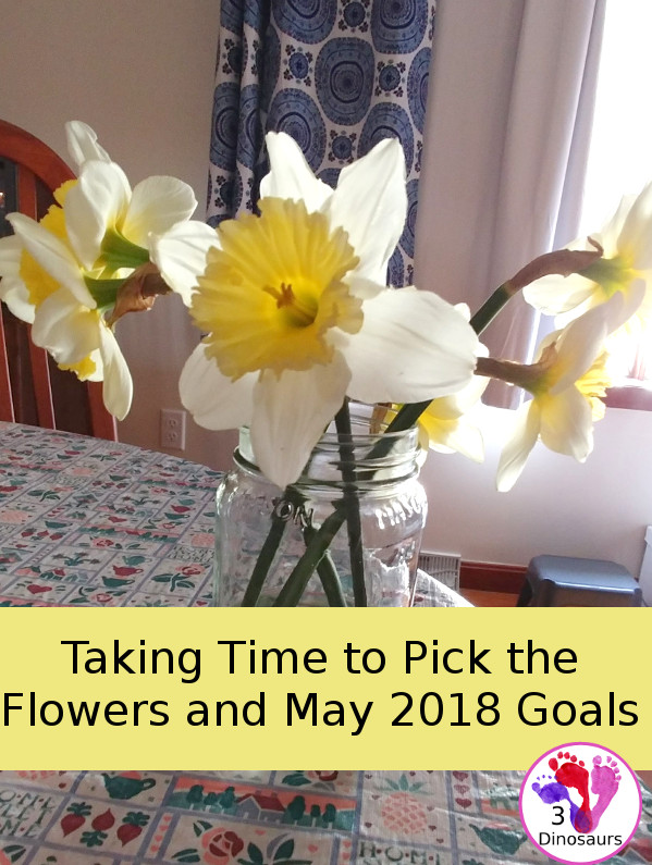Taking Time to Pick the Flowers and May 2018 Goals - 3Dinosaurs.com