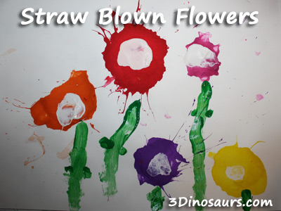 Straw Blown Flowers