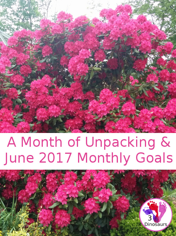 June Monthly Goals - blog, family and personal goals for June 2017 - 3Dinosaurs.com