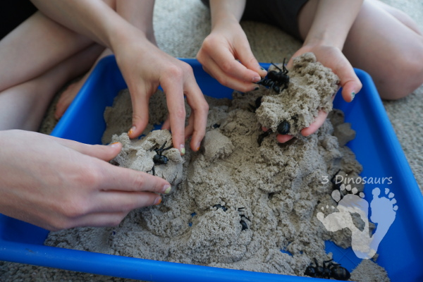 Fun Sensory Play in an Ant & Kinetic Sand Sensory Bin - an easy to set up and play in sensory bin for kids with an ant theme - 3Dinosaurs.com