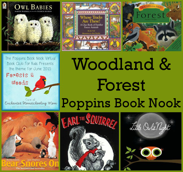 June Poppins Book Nook: Forest & Woodland - 3Dinosaurs.com