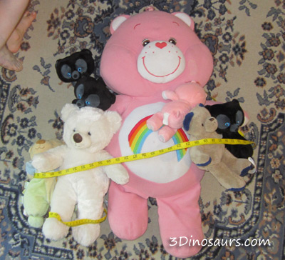 Measuring Teddy Bears