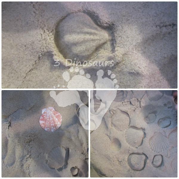 Beach Sensory Bin - 3Dinosaurs.com