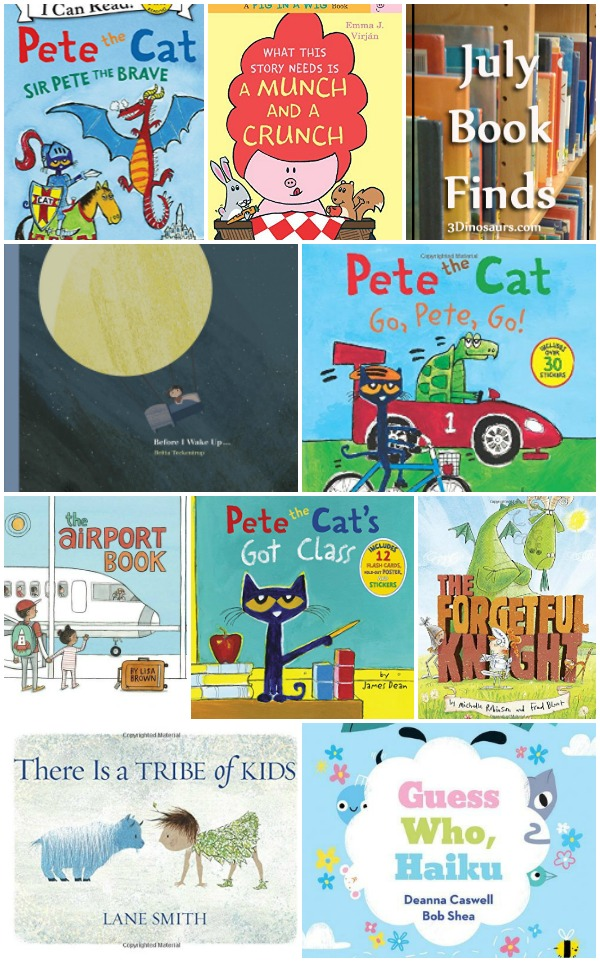 July 2016 Book Finds: pete the cat, math, dragons & knights, poems, animals, dreams and the airport - 3Dinosaurs.com