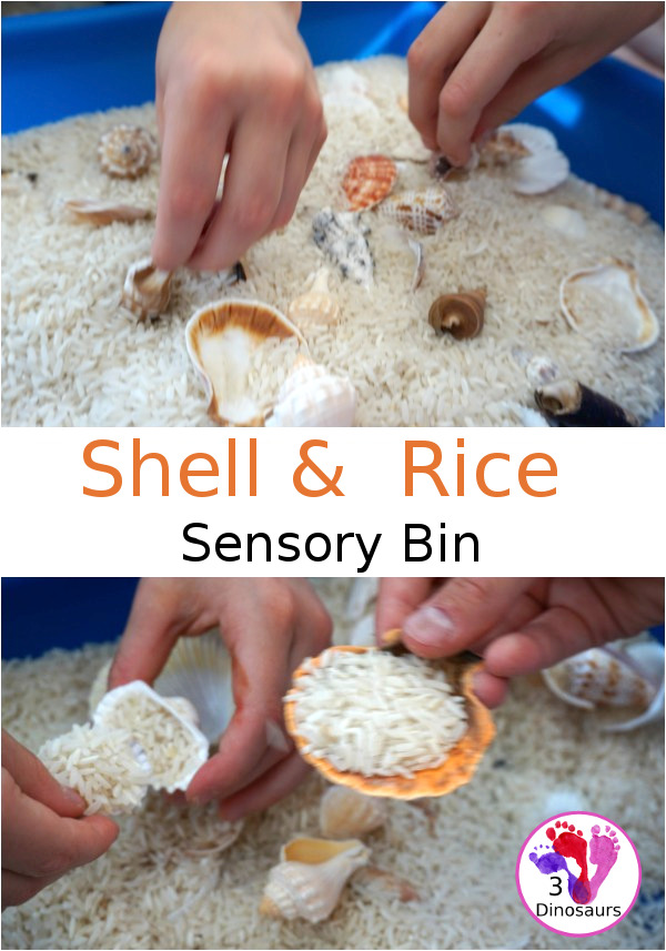 Easy Sensory Play: Shell and Rice Sensory Bin - a simple and easy bin that kids can have fun playing in - 3Dinosaurs.com