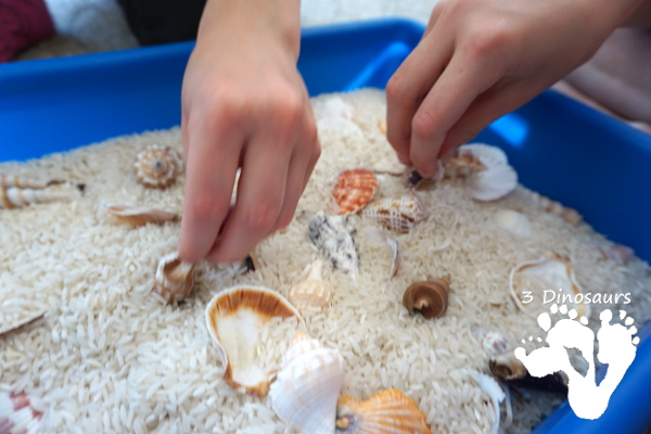Easy Sensory Play: Shell and Rice Sensory Bin - a simple and easy bin that kids can have fun playing in. - 3Dinosaurs.com