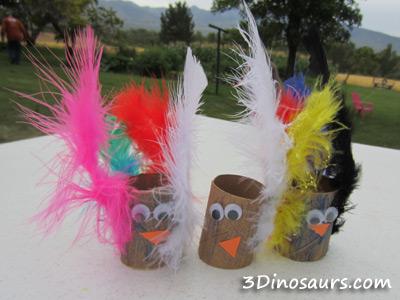 Peacock supplies