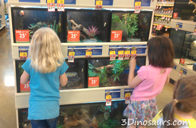 Pet Store Learning