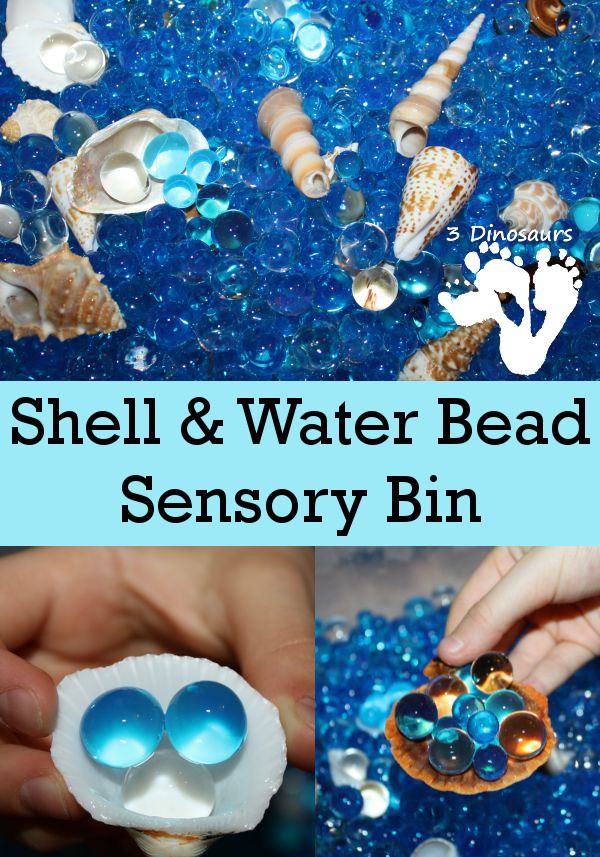 Shell and Water Sensory Bin - 3Dinosaurs.com
