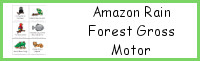 Amazon Rain Forest Gross Motor Cards