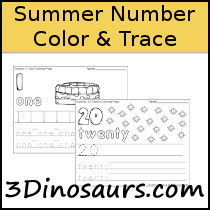 Summer Themed Number Color & Trace