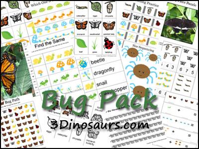 Bug Printables