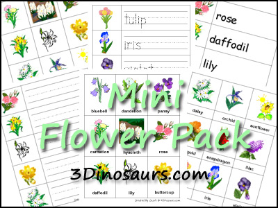 Mini Flower Printables