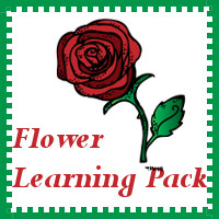 Free Flower Learning Pack - 3Dinosaurs.com