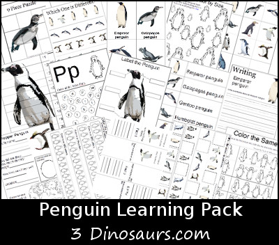 Free Penguin Learning Pack - 3Dinosaurs.com