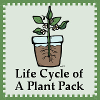 Free Life cycle of a Plant Pack - 3Dinosaurs.com