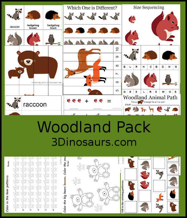 Free Woodland Pack PreK & Kindergarten - a mix of hands-on activities and no-prep printables to explore animals from the woodlands or forest with 30 pages of activities - 3Dinosaurs.com
