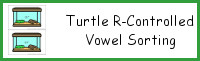 Turtle R-Controlled Vowel Sorting