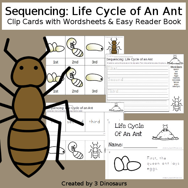 Sequencing: Life Cycle of an Ant with clip cards, task cards, no-prep worksheets and easy reader books $ - 3Dinosaurs.com #printablesforkids #sequencingforkids #earthday #springprintables #tpt #teacherspayteachers