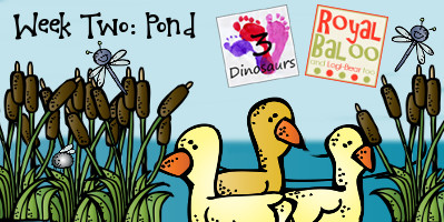 Build Up Summer Learning: Week 2 Pond