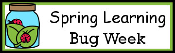 Spring Learning: Bug Week